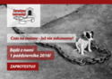 zerwijmy_lancuchy_banner-300x212-logo akcji - Kopia.png