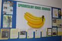Galeria banan