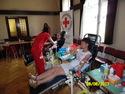 Galeria Krew darem życia