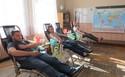 Galeria Młoda krew ratuje życie